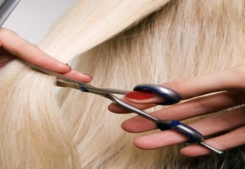peluqueria y estetica