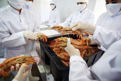 manipulacion de alimentos trabajo